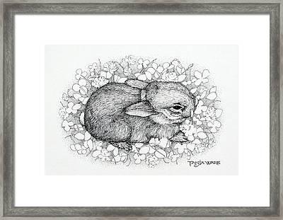 Little Big Ears Framed Print by Tanja Ware