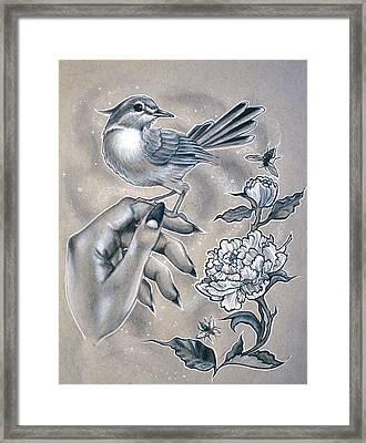 Little Bird Framed Print by Amber Lamar