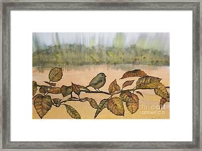 Little Bird On A Branch Framed Print by Carolyn Doe