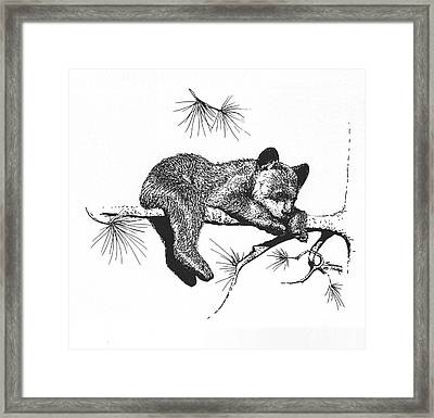 Little Black Bear Cub Framed Print by Suzanne McKee