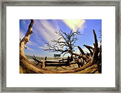 Little Blue And Driftwood Beach Hunting Island Beaufort Sc Framed Print