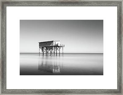 Little Blue In Black And White Framed Print by Ivo Kerssemakers