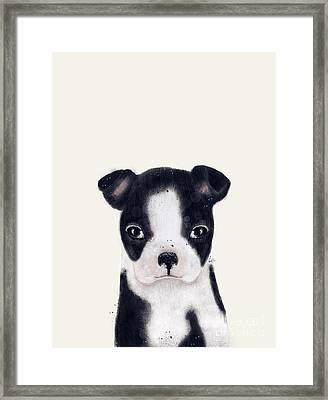 Framed Print featuring the painting Little Boston Terrier by Bri B
