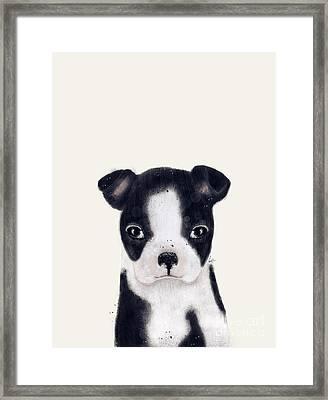 Little Boston Terrier Framed Print