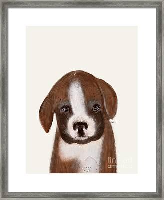 Little Boxer Framed Print by Bri B