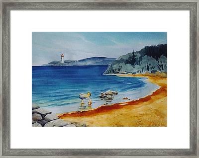 Little-boy-at-the-beach Framed Print by Nancy Newman