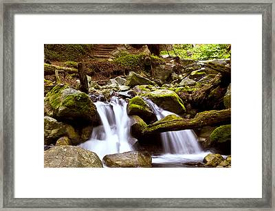 Little Creek Falls Framed Print