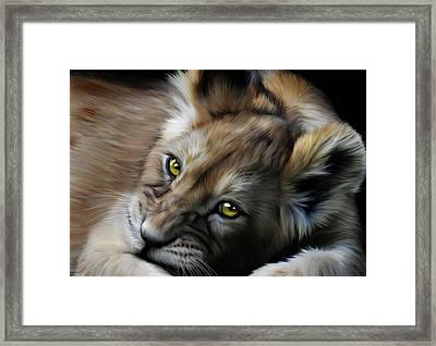 Little Cub Framed Print by Julie L Hoddinott