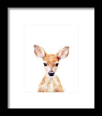 Deer Framed Prints