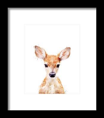 Woodland Framed Prints