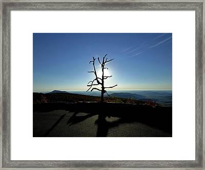 Framed Print featuring the photograph Little Devil Stairs Overlook by Robert Geary