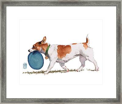 Little Dog With Blue Frisbee Framed Print by Debra Jones
