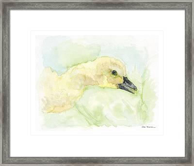 Little Duckling Framed Print by Joan Sharron