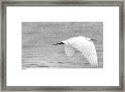 Little Egret Framed Print