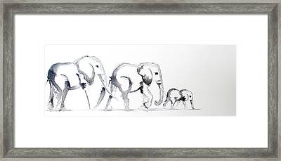 Little Elephant Family Framed Print