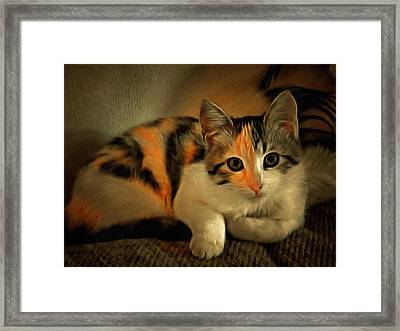 Little Emmy Framed Print