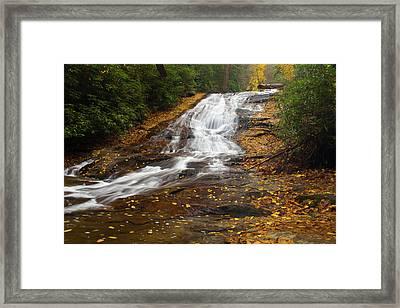 Little Fall Framed Print