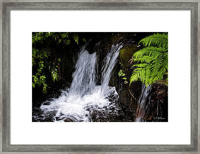 Little Falls Framed Print by Christopher Holmes