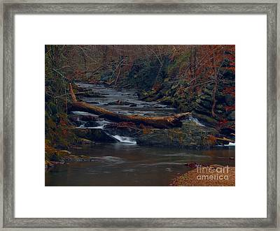 Little Falls Framed Print