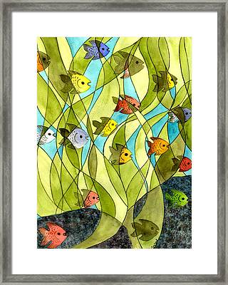 Little Fish Big Pond Framed Print by Catherine G McElroy