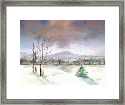 Little Forlorn Pine Framed Print by Arline Wagner