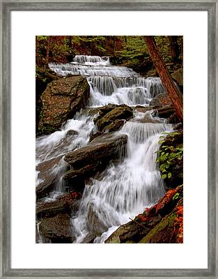 Framed Print featuring the photograph Little Four Mile Run Falls by Suzanne Stout
