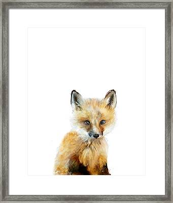 Little Fox Framed Print by Amy Hamilton