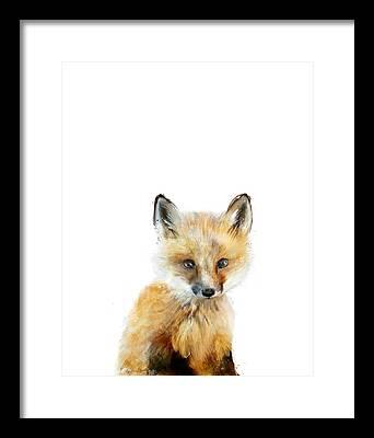 Fox Baby Framed Prints