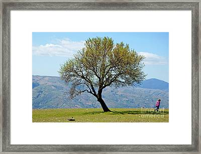 Little Girl Walking Past A Tree In Springtime Framed Print