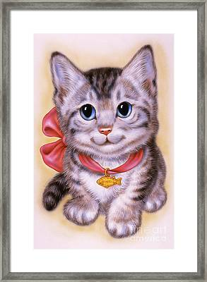 Little Grey Kitten 3 Framed Print