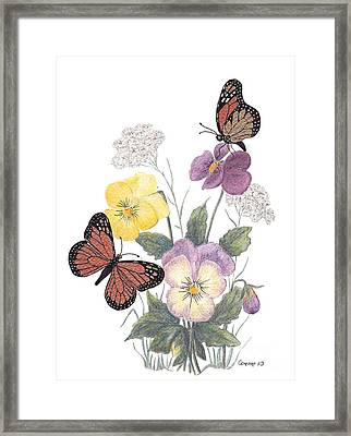Little Heartsease Framed Print by Stanza Widen