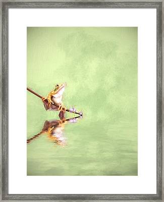 Little Hopper Framed Print by Sharon Lisa Clarke