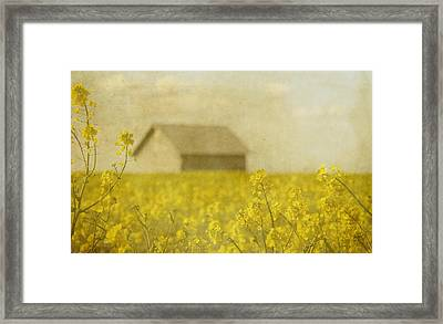 Little House On The Prairie Framed Print by Rebecca Cozart