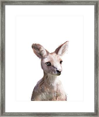 Little Kangaroo Framed Print