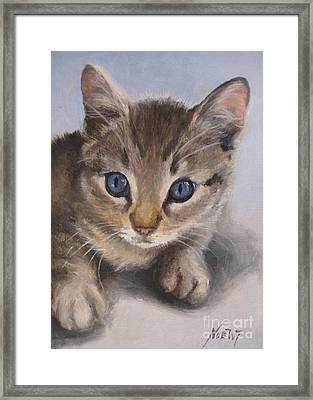 Framed Print featuring the painting Little Kitty by Jindra Noewi