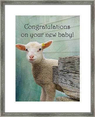 Little Lamb New Baby Greeting Framed Print by Nina Silver