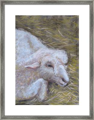 Little Lamb Framed Print by Wendie Thompson