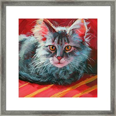 Little Meow Meow Framed Print