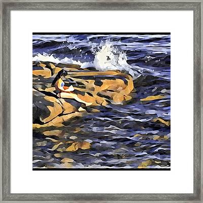 Little Mermaid Framed Print