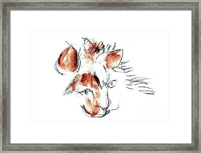Framed Print featuring the mixed media Little Merph - Cats by Carolyn Weltman