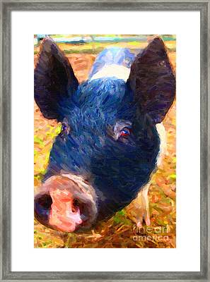 Little Miss Piggy Framed Print by Wingsdomain Art and Photography