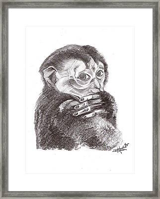 Little Monkey Framed Print by John Keaton