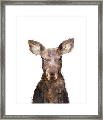 Little Moose Framed Print by Amy Hamilton
