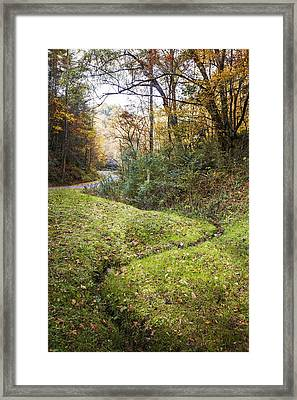 Little Mountain Stream Framed Print