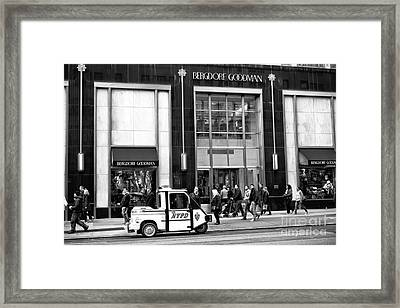 Little Nypd On 5th Avenue Framed Print