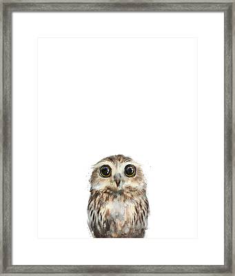 Little Owl Framed Print by Amy Hamilton