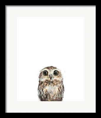 Owl Framed Prints