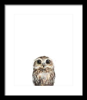 Fauna Framed Prints