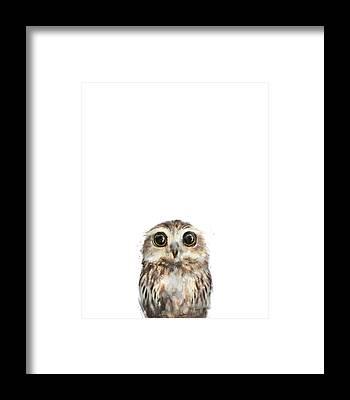 Little Animals Framed Prints
