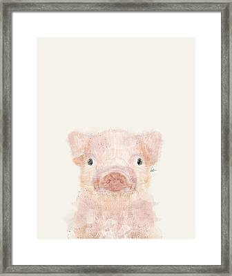 Little Pig Framed Print by Bri B